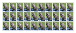 SIERRA LEONE 2018 MNH White Faced Owl 30v - OFFICIAL ISSUE - DH1902 - Sierra Leone (1961-...)