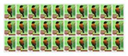 SIERRA LEONE 2018 MNH Birds 30v - OFFICIAL ISSUE - DH1902 - Sierra Leone (1961-...)