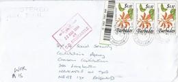 Barbados 1994 Worthing Flower Lent Tree Registered Cover - Barbados (1966-...)