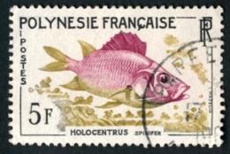 POLYNESIE 1962 - Yv. 18 Obl.   Cote= 3,00 EUR - Poissons : Holocentrus Spinifer  ..Réf.POL23508 - Polynésie Française