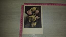C-66708 FIORE FIORI ILLUSTRATA - Flowers, Plants & Trees