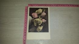 C-66709 FIORE FIORI ILLUSTRATA - Flowers, Plants & Trees