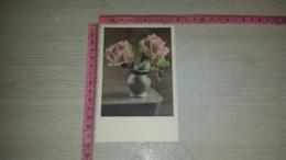C-66710 FIORE FIORI ILLUSTRATA - Flowers, Plants & Trees