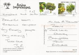 Barbados 2007 Bridgetown Tree Seaside Mahoe 75c Jerusalem Thorn $1 Viewcard - Barbados (1966-...)