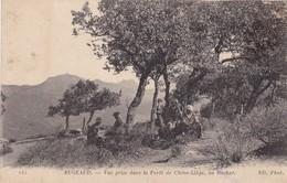 ALGERIE ,,,,BUGEAUD ,,,,VUE PRISE DANS LA FORET DE CHENE-LIEGE , AU ROCHER ,,,,voyage 1925;;;; - Otras Ciudades