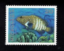 703449517 MICRONESIA POSTFRIS MINT NEVER HINGED POSTFRISCH EINWANDFREI  SCOTT 158 FISH - Micronésie