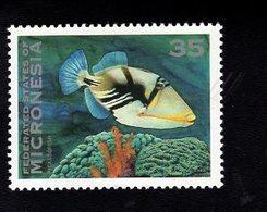 703450195 MICRONESIA POSTFRIS MINT NEVER HINGED POSTFRISCH EINWANDFREI  SCOTT 162A FISH - Micronésie