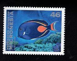 703452742 MICRONESIA POSTFRIS MINT NEVER HINGED POSTFRISCH EINWANDFREI  SCOTT 217 FISH - Micronésie