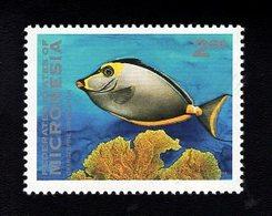 703453441 MICRONESIA POSTFRIS MINT NEVER HINGED POSTFRISCH EINWANDFREI  SCOTT 167 FISH - Micronésie