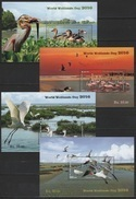 Sri Lanka (2016) - 4 Blocks -  /  Birds - Flamingo - Ducks - Wetlands - Tern - Oiseaux - Aves - Flamingos