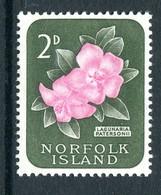 Norfolk Island 1960-62 Definitives - 2d Lagunaria Patersonii MNH (SG 25) - Norfolk Island