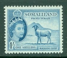Somaliland Protectorate: 1953/58   QE II - Pictorial    SG144     1/-     MH - Somaliland (Protectorate ...-1959)