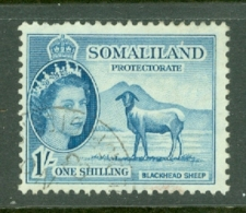 Somaliland Protectorate: 1953/58   QE II - Pictorial    SG144     1/-    Used - Somaliland (Protectorate ...-1959)