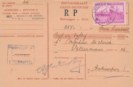 300/28 - BELGIQUE - Carte-Récépissé TP Exportations LONDERZEEL 1950 - Cachet Brasserie Le Cornet ( De Hoorn) STEENHUFFEL - Bières