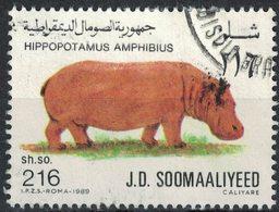 Somalie 1989 Oblitéré Used Animal Hippopotamus Amphibius Hippopotame - Somalie (1960-...)