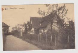 40010    - Wareghem  Rozenhuis - Waregem