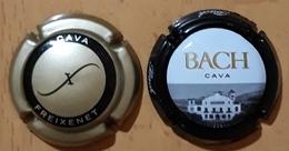 2 PLACAS DE CAVA FREIXENET + BACH. - Placas De Cava
