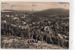 ALLEMAGNE : Bad Gottleuba Blick Vom Tannenbusch - Bad Gottleuba-Berggiesshuebel