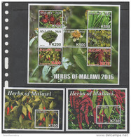 MALAWI , 2016, MNH, SHEETLET + 5 S/SHEETS, HERBS, PEPPERS,  SUPERB OFFICIAL ISSUE, SCARCE - Big Cats (cats Of Prey)