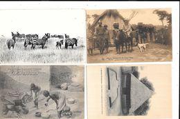 11030  - Lot De 10 CPA D' AFRIQUE - Postcards
