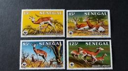 BUZIN - Sénégal: Timbres Numéro 661/64 état Neuf - Sénégal (1960-...)