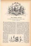 114 Verlag Fliegende Blätter 1 Artikel Mit 27 Bildern Von 1894 !! - Zeitungen & Zeitschriften