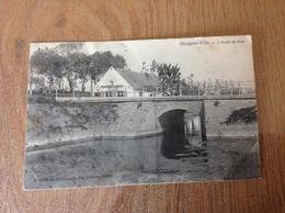 Nieuport  L'Arche De Noe - Cartes Postales