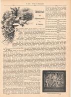 122 Wildbad Schwarzwald 1 Artikel Mit Ca. 11 Bildern Von 1890 !! - Historische Dokumente