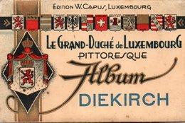 DIEKIRCH - Carnet 10 CPA - Diekirch