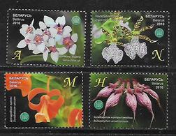 Belarus 2016 Orchids - The Central Botanical Garden Of NAS   MNH - Belarus