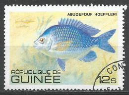 Guinea 1980. Scott #805 (U) Abudefuf Hoeffleri, Fish * - Guinée (1958-...)