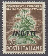 TRIESTE  Zona A AMG-FTT - 1950 - Yvert 80 Usato. - Gebraucht