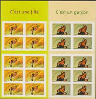FRANCE 2 Carnets Timbres De Naissance 2004 - BC 3634 BC3635 - Markenheftchen