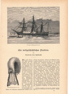150 Adolf Erik Nordenskiöld Polarforschung Vega 1 Artikel Mit Ca.18 Bildern Von 1886 !! - Zeitungen & Zeitschriften