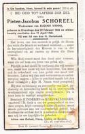 DP Pieter J. Schoreel ° Elverdinge Ieper 1856 † 1942 X Eugenie Vienne - Images Religieuses