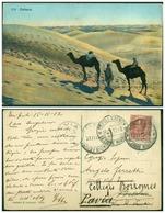 CARTOLINA - V8613 COLONIE ITALIANE TRIPOLITANIA 1912 Cartolina Illustrata(Sahara)affrancata Con Leoni 10 C.con Annulluno - Libia