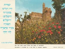 JERUSALEM The Citadel - Israel
