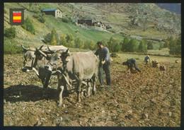 Ed. Fisa Nº 3930. *España Típica. Labranza* Dep. Legal B. 8604-XI. Nueva. - Agricultura