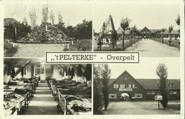 Overpelt -- 't Pelterke.   ( 2 Scans ) - Overpelt