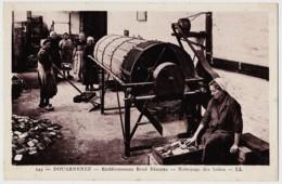 29 - B58217CPA - DOUARNENEZ - Nettoyage Des Boites -  Etablissement Rene Beziers - Parfait état - FINISTERE - Douarnenez