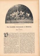 162 Franzosen Kolonialreich Westafrika 1 Artikel Mit 7 Bildern Von 1886 !! - Zeitungen & Zeitschriften
