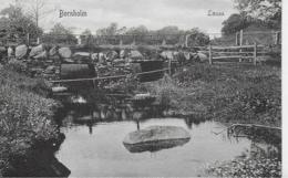 AK 0133  Bornholm - Laesaa Ca. Um 1910 - Dänemark