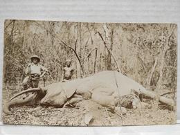 Congo Belge. Chasse Elephant. 6.5x11 Cm - Afrique