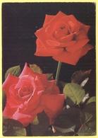 Tematica - Fiori - 19?? - 2,20 Liberté De Gandon - Rose - Viaggiata Da Ivry-sur-Seine Per Paris - Flowers