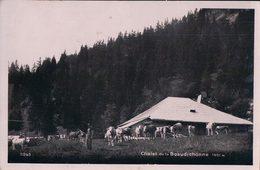 Chalet Et Troupeau De La Beaudichonne, La Rippe (11263) - VD Vaud