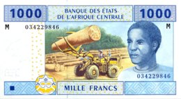Central African States 1.000 Francs, P-307M (2002) - UNC - CENTRAL AFRICAN REPUBLIC - Zentralafrikanische Staaten