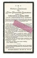 D 546. ALICE P.  LAMMENS  Dochter Van C. En E. Dekieu - °VLADSLOO 1907 / +BRUSTEM 1918 (door Oorlog Verdreven) - Images Religieuses