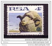 RSA, République D'afrique Du Sud, South Africa, Mouton, Lamb, Laine, Wool - Ferme