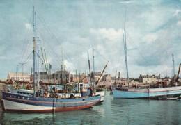 Peche - Pesca