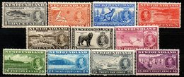 TERRE NEUVE - (NEWFOUNDLAND) - (Colonie Britannique) - 1937 - Commémoration Du Couronnement De George VI - Grossbritannien (alte Kolonien Und Herrschaften)